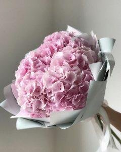 Những loài hoa tượng trưng cho sự hối hận